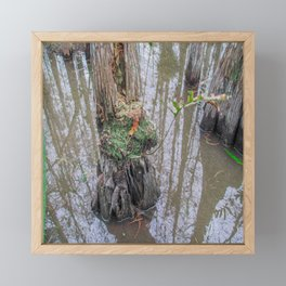 The  Swamp Fairy's Home Framed Mini Art Print