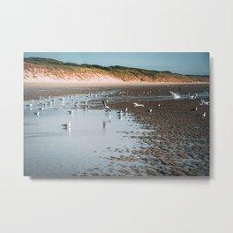 Low tide beach Metal Print