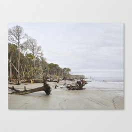 Beach Erosion Panorama 01 Canvas Print