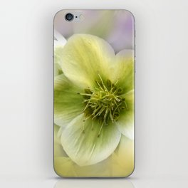 the beauty of a summerday -69- iPhone Skin