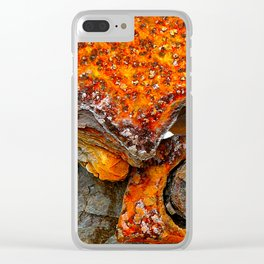 meEtIng wiTh IrOn no25 Clear iPhone Case