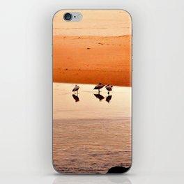 Seagull Huddle iPhone Skin