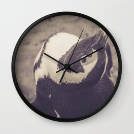 Adorable African Penguin Series 1 of 4 Wall Clock