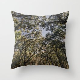 Wormsloe Live Oak Avenue - Savannah III Throw Pillow
