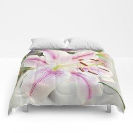 Stargazer Lily Comforters