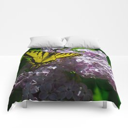 Pollination - Series; 2 of 3 Comforters
