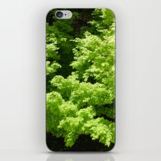 Japanese Maple Green iPhone Skin