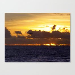 Helo playing in the sun Canvas Print