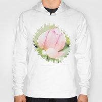 lotus flower Hoodies featuring Lotus by Karl-Heinz Lüpke