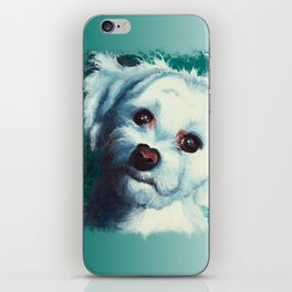 Maltese dog - Pelusa - by LiliFlore iPhone Skin
