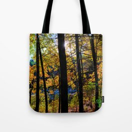 Walden Pond Autumn Forest  in Concord Massachusetts Tote Bag