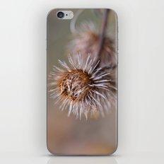 The Thorns iPhone & iPod Skin