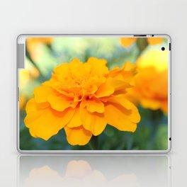 Sunny Delight Laptop & iPad Skin