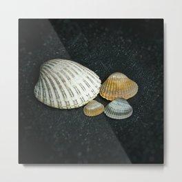 Beach treasures Metal Print