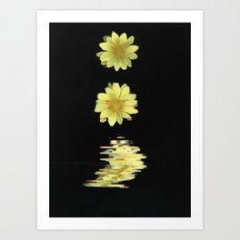 Daisy Time Splice Art Print