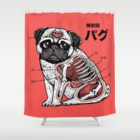 anatomy Shower Curtains featuring Pug Anatomy by Huebucket