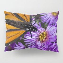 Monarch Butterfly 3 Pillow Sham