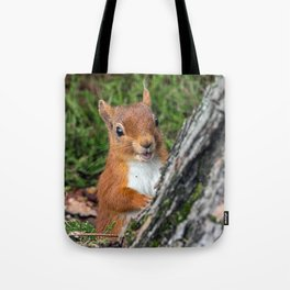 Nature woodland animals smiling squirrel Tote Bag