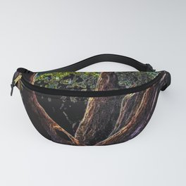 A Tree Grows in Almeria ACPA151010c-14 Fanny Pack