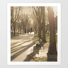 Early Spring, Late Afternoon Art Print