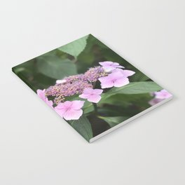 Pink flower in Butchart's Garden Notebook