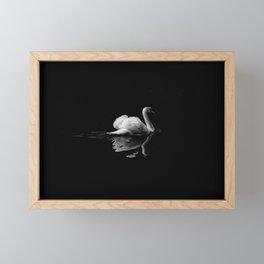 Black swan Framed Mini Art Print