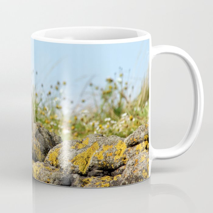 Seal at Dunvegan Castle, Scotland Coffee Mug
