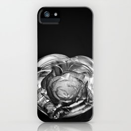 beauty and the flower iPhone Case