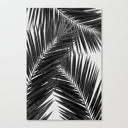 Palm Leaf Black & White III Canvas Print