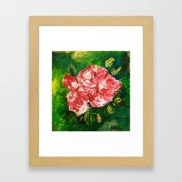 Morning Rose Framed Art Print