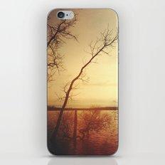 Kindred Spirits iPhone & iPod Skin