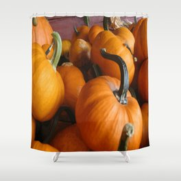 Vector Style Harvest Of Pumpkins Shower Curtain