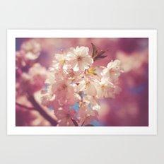 Pink blossom branch Art Print