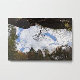 Hocking Hills Tree Metal Print