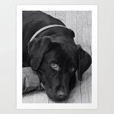 Puppy Portrait Textured Art Print