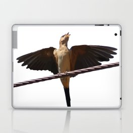 Swallow Song Vector Laptop & iPad Skin