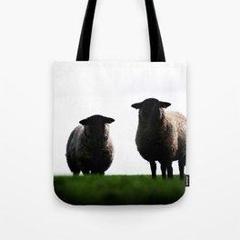 Welsh Sheep Staring Tote Bag