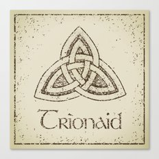 trionaid Canvas Print
