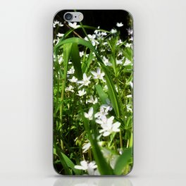 Spring Beauty 13 iPhone Skin