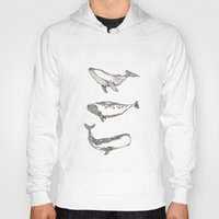 whales Hoodies featuring Whales by dreamshade
