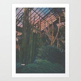 Cactus Life Art Print