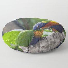Rainbow Lorikeet Floor Pillow