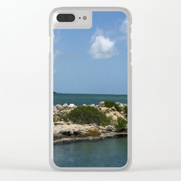 Chilling on the Water Clear iPhone Case
