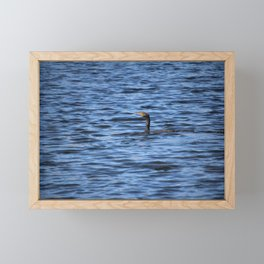 Cormorant Floats In The Blue Water Framed Mini Art Print
