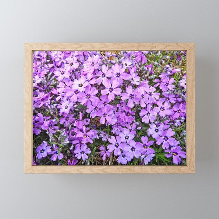 Lavender Creepers Framed Mini Art Print