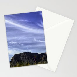Desert Sky with mountains and Bluebonnets Stationery Cards