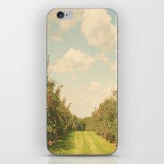 Allée de Pommes iPhone & iPod Skin
