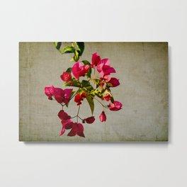 flowery branch III Metal Print