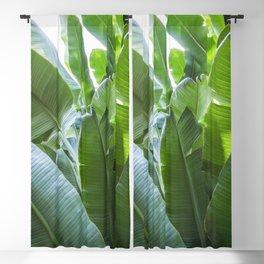 Banana Leaves | Green | Home Decor | Art Print | Tropical Plant Blackout Curtain