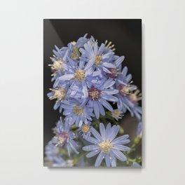 Tiny Blue Aster Flowers portrait Metal Print